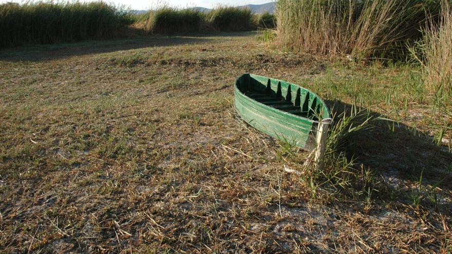 Pozos ilegales están desecando Doñana, Mar Menor y Daimiel, afirma WWF