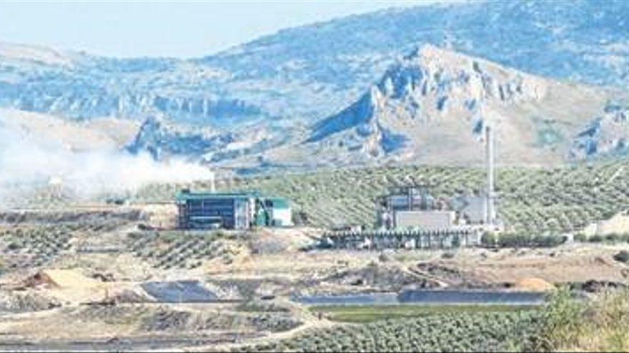 La Agencia Andaluza de la Energía concede ayudas a Oleícola El Tejar y a Aceites La Pedriza