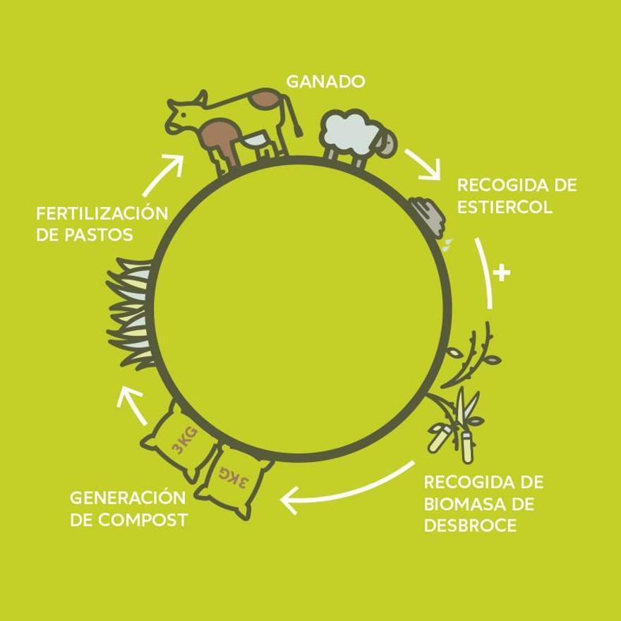 Grafico del modelo de Economía Circular que supone eMULA