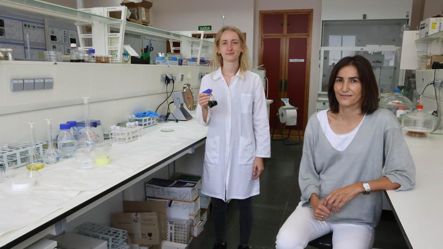 Nanopartículas magnéticas para una detección precoz del cáncer
