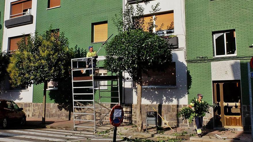 La plantilla de Mieres critica que no se cubren plazas de la oferta pública de empleo