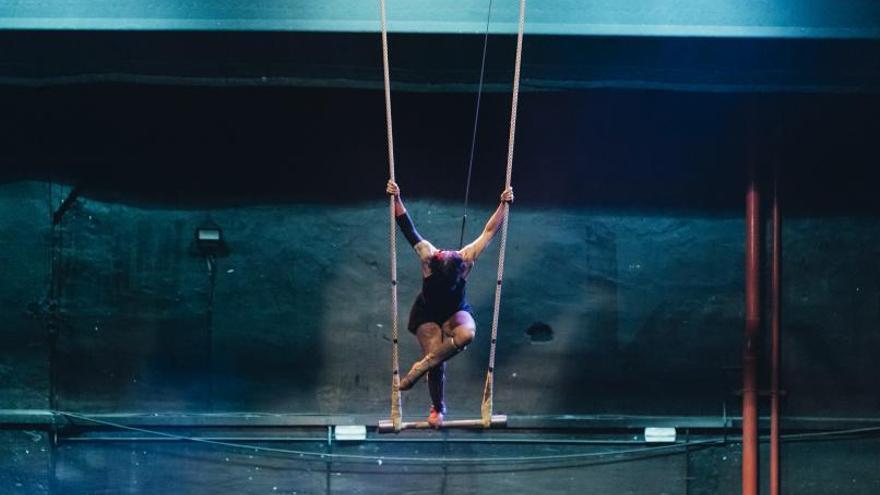 Circo: una noche con D.O.