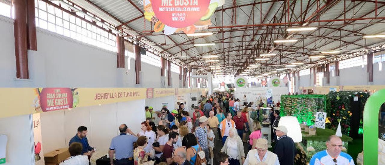 Mogán triunfa en la feria de los sabores con la venta de 300 kilos de aguacates