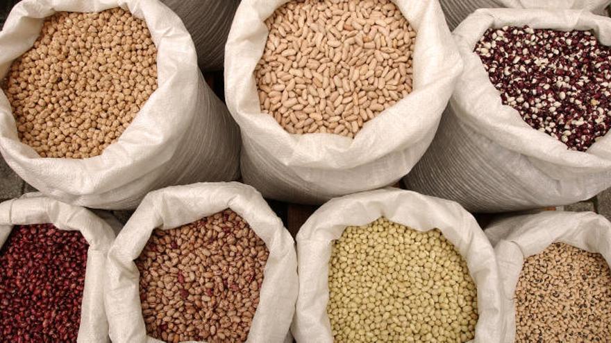El truco en tu dieta para obtener proteínas sin carne ni pescado