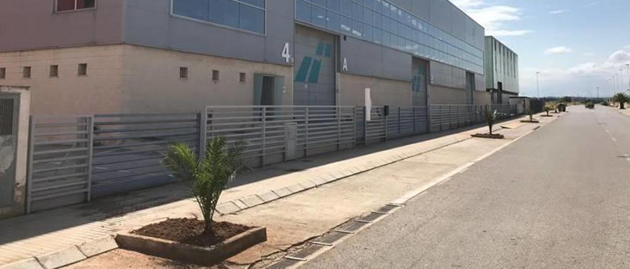 Empresas de Moncada 3 adecentan los alcorques abandonados