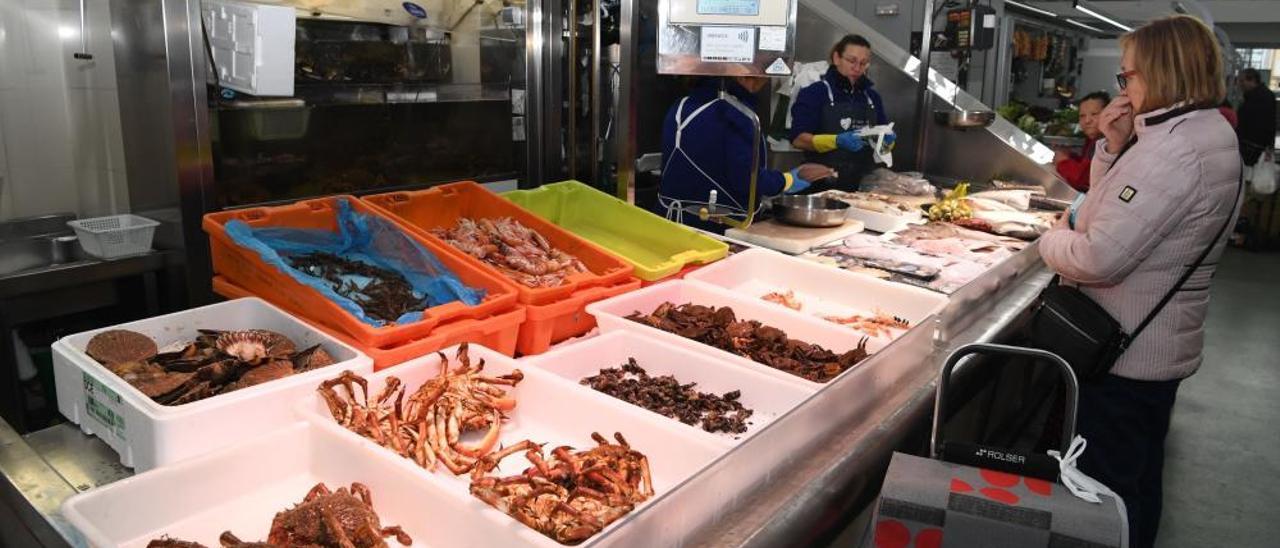 El kilo de percebe alcanza los 400 euros en A Coruña en vísperas de Nochebuena