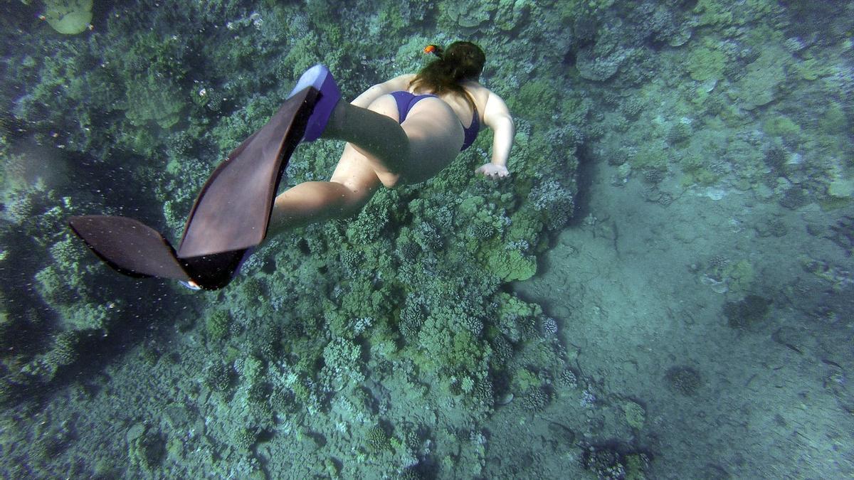 5 lugares de la provincia de Alicante perfectos en los que realizar snorkel.
