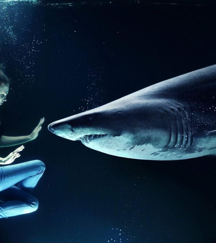 Las 5 cámaras acuáticas de Amazon a un precio imbatible para grabar debajo del agua los videos de tus vacaciones