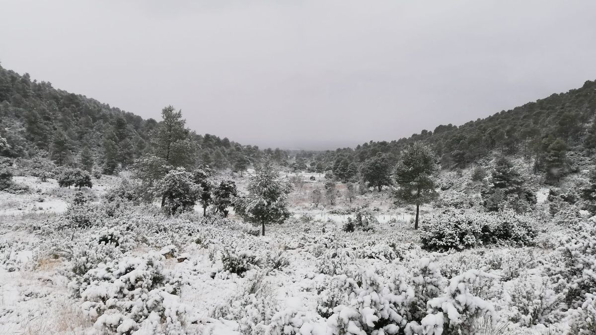 Utiel, nevado