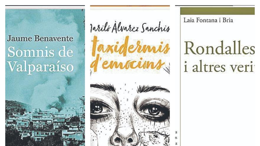 Arriben les obres guanyadores dels Premis València i València Nova