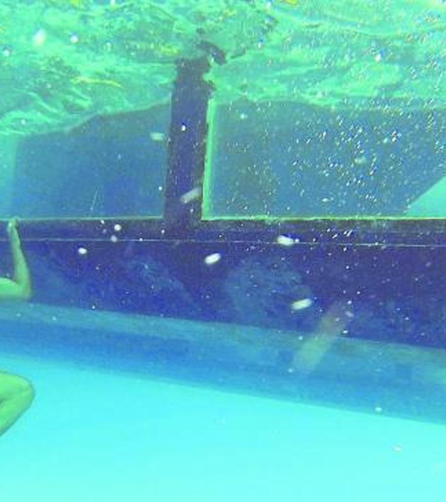 Bootsausflüge auf Mallorca: Was bieten die Glasboden-Boote?