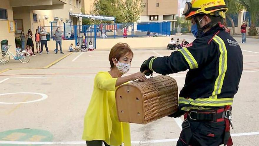 El bombero entrega el felino a una responsable del colegio.