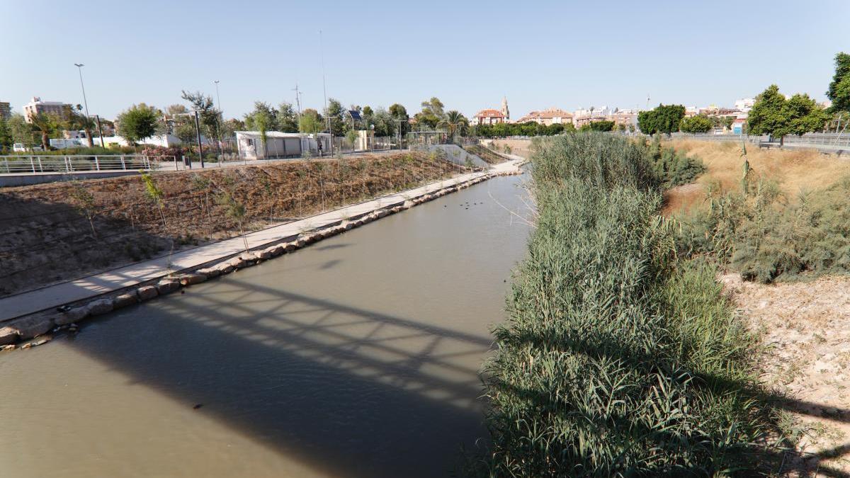 ANSE y Ayuntamiento colaborarán para mejorar el entorno del río entre Murcia y la Contraparada.