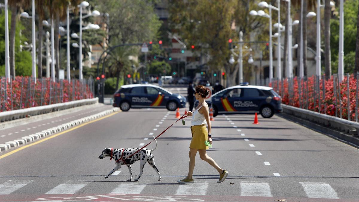 Una mujer pasea a su perro en Valencia