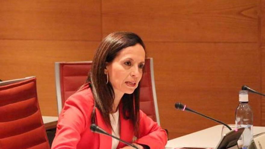 Etelvina Andreu niega conocer la consultora que le hizo la campaña