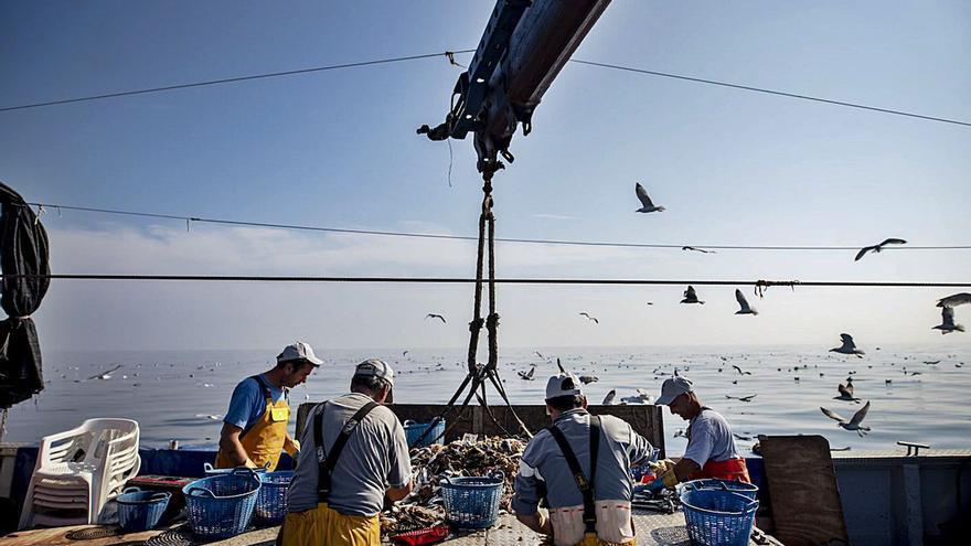 La mitad del pescado de lonja de la provincia sale del puerto de Gandia