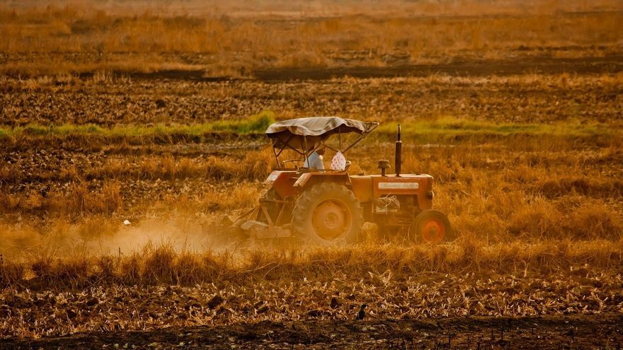 Zasnet programa dos cursos gratuitos sobre agricultura ecológica y circuitos cortos de comercialización