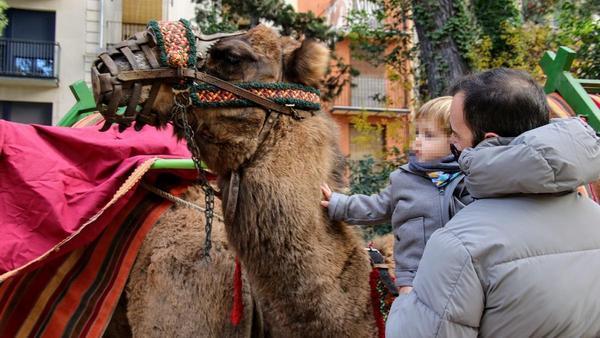 Alcoy celebra su Mercat del Nadal con restricciones