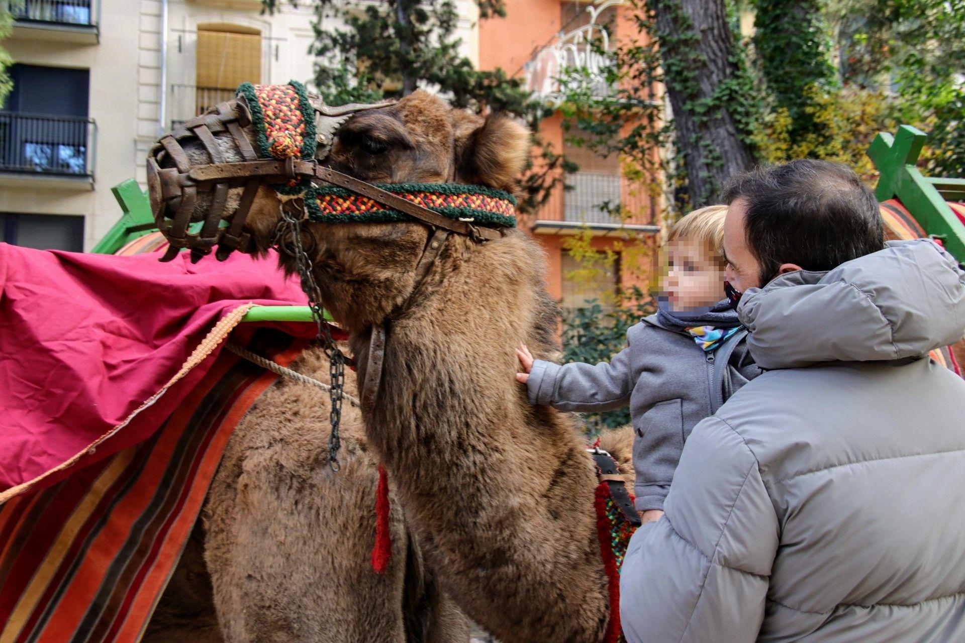 Galería: Alcoy celebra su Mercat del Nadal con restricciones