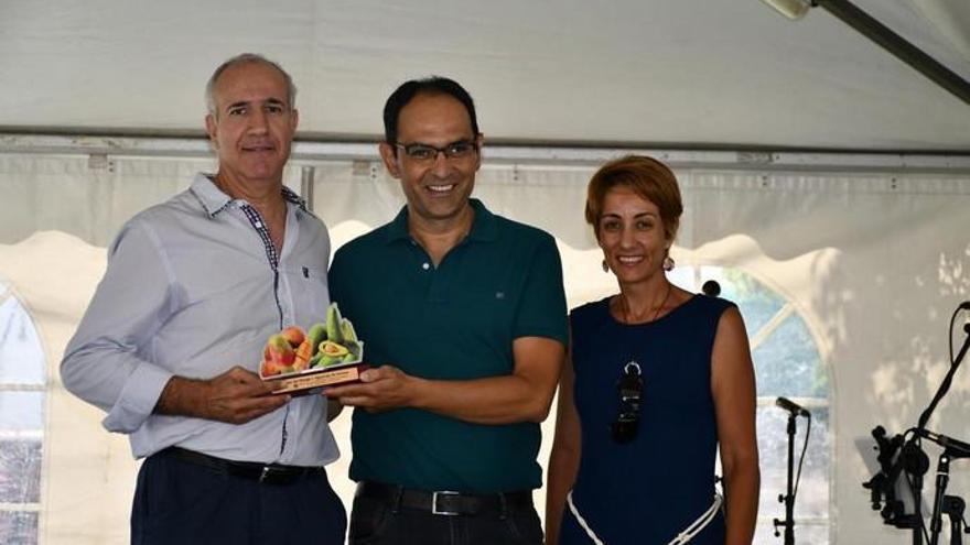 Éxito de la IV Feria del Mango y Aguacate de Mogán