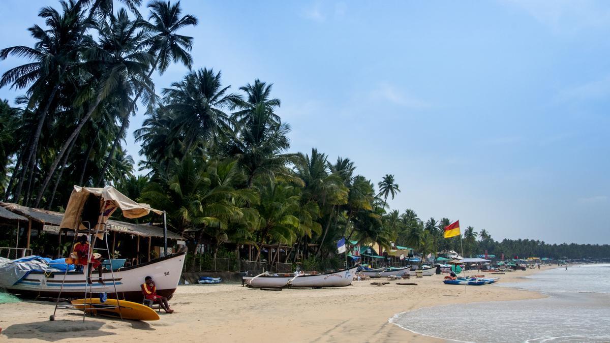 La platja de Palolem, al sud de Goa, tot ella és vegetació desmesurada