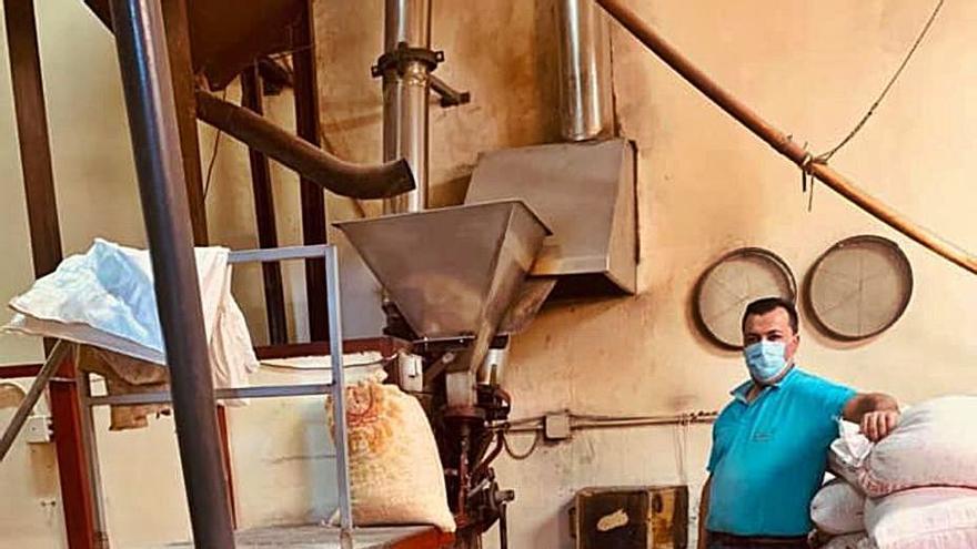 El Sauzal: sidra y gofios de premio