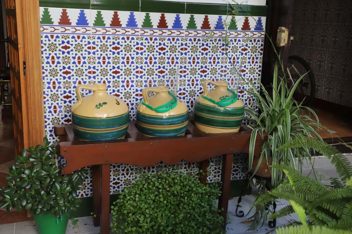 Los patios de Córdoba: las mejores fotos en San Agustín