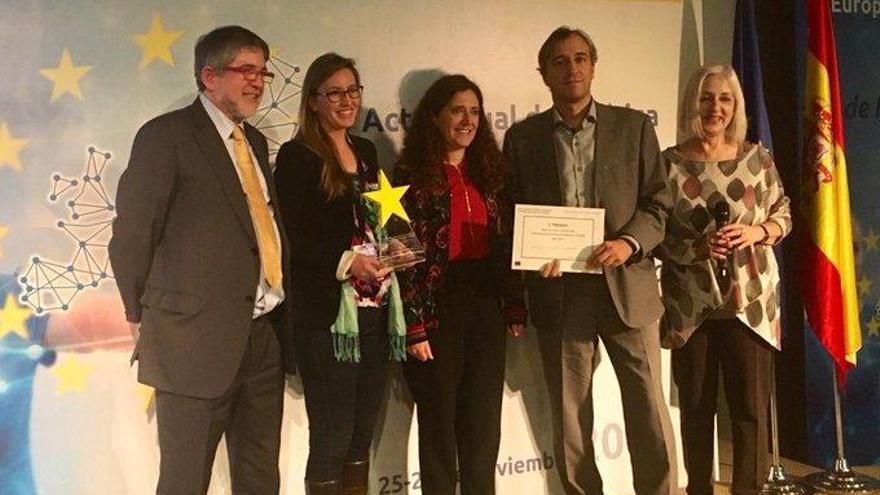 Forscherin auf Mallorca gewinnt Preis für Kampf gegen Asiatische Hornisse