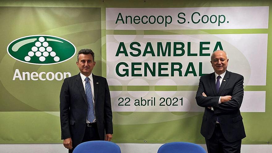 Anecoop sortea la covid al crecer un 6,6 % y lograr un negocio de 966 millones