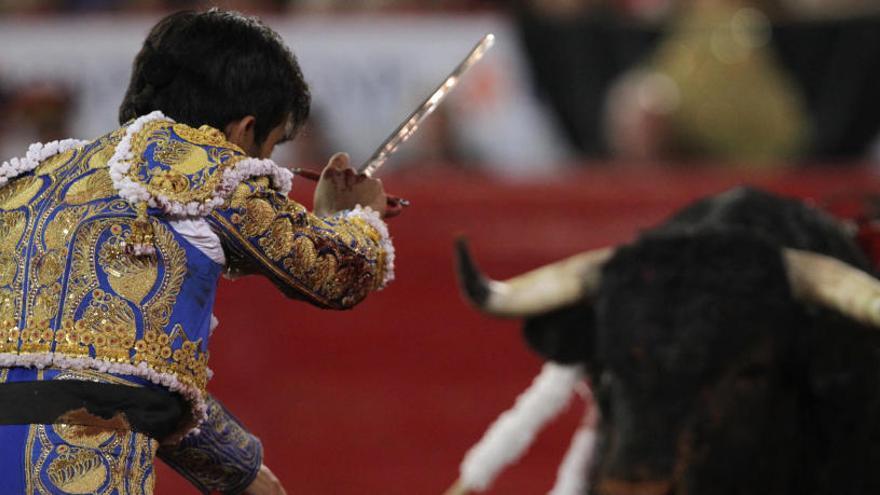 Suspenden de forma cautelar la ley balear que prohíbe matar al toro en las corridas