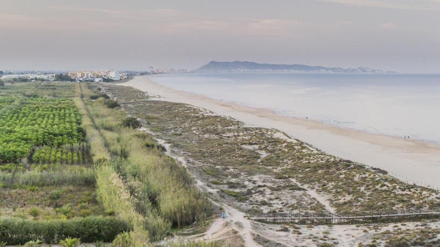 Denuncian la extracción de arena de la playa protegida de l'Ahuir de Gandia