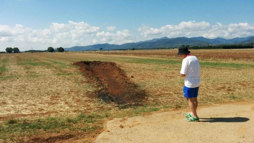 Un fals «meteorit» esvalota el galliner