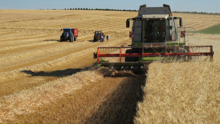 La cosecha de cereal en la región llega a los 8,5 millones de toneladas