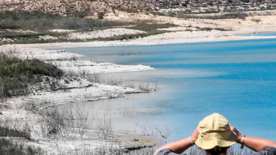 El embalse de La Pedrera recibe casi tres hectómetros derivados de la crecida del Segura