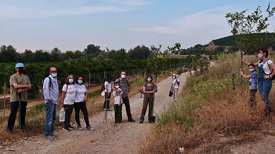 Plantan una veintena de árboles en el camino hacia el Retortillo de Palma del Río