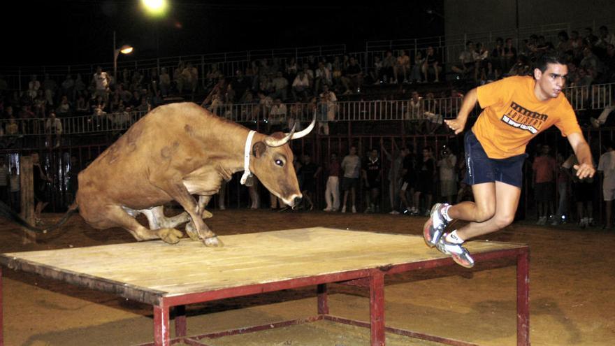 """Adios a """"Fusilera"""", la legendaria vaca que ha marcado la historia de los """"bous al carrer"""""""