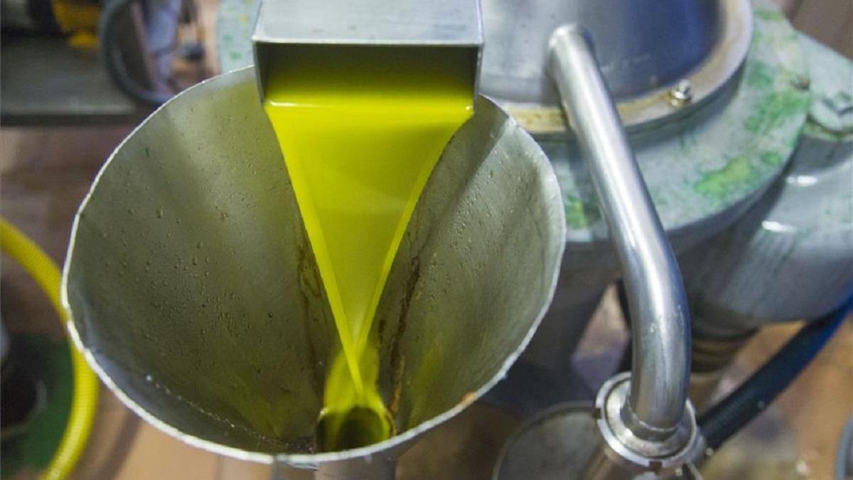 La Junta sitúa en más de 194.700 toneladas la producción de aceite
