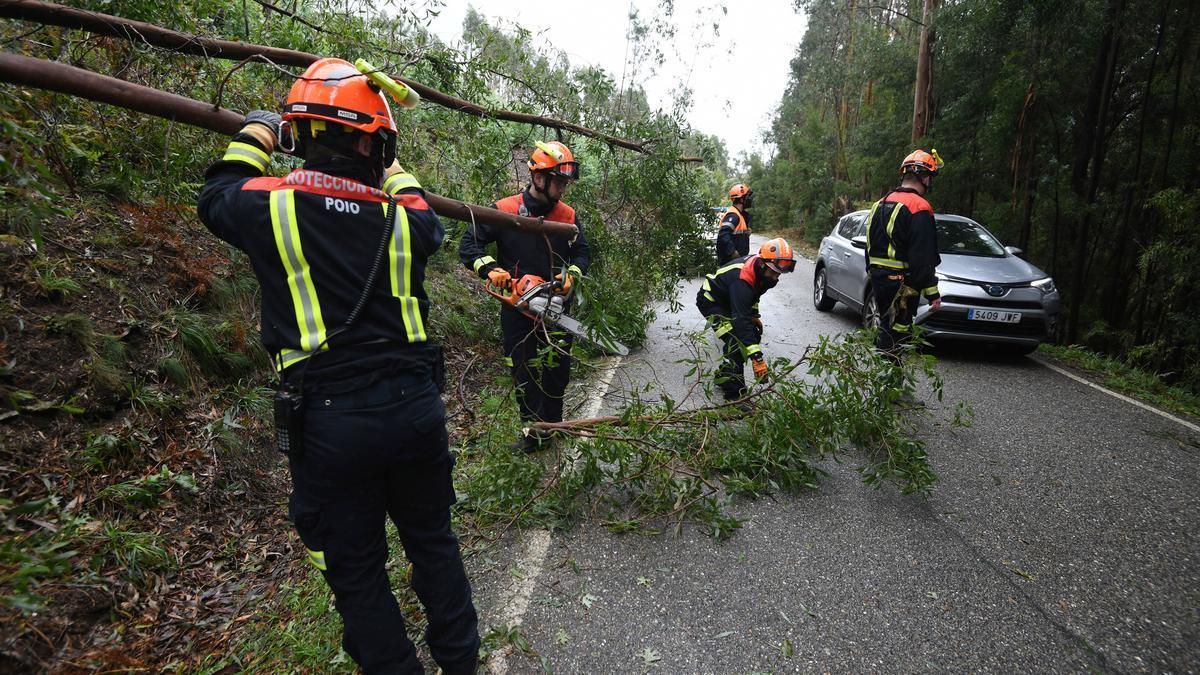 Protección Civil de Poio retira árboles en la carretera de A Escusa.