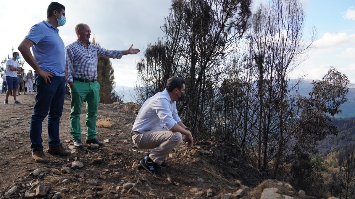 El presidente de la Junta de Andalucía, Juanma Moreno, en una imagen de archivo de su visita a distintas explotaciones agrarias afectadas por el incendio de Sierra Bermeja.