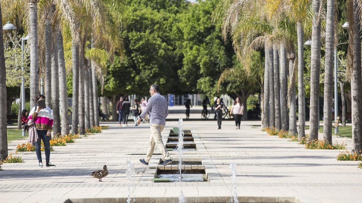 Campus de la Universidad de Alicante en San Vicente del Raspeig.
