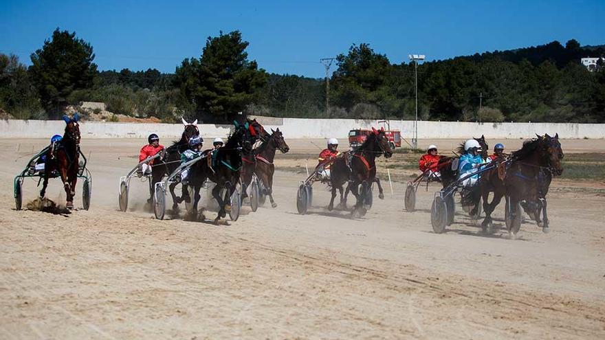 El Consell anuncia una inversión de 336.908 euros para reformar el hipódromo de Sant Rafel