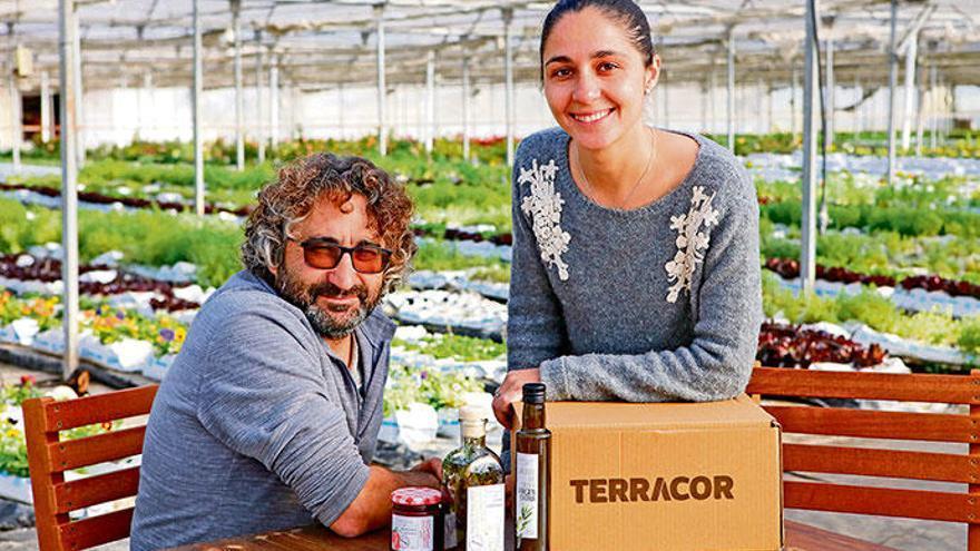 Hier wird Obst und Gemüse von Mallorca zur Marke