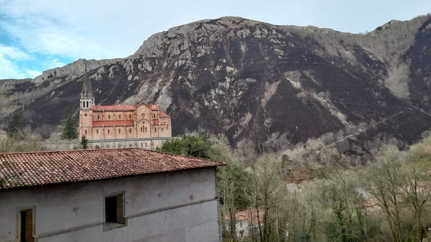 Ayudas de emergencia para repoblar la montaña de Covadonga tras el incendio de febrero