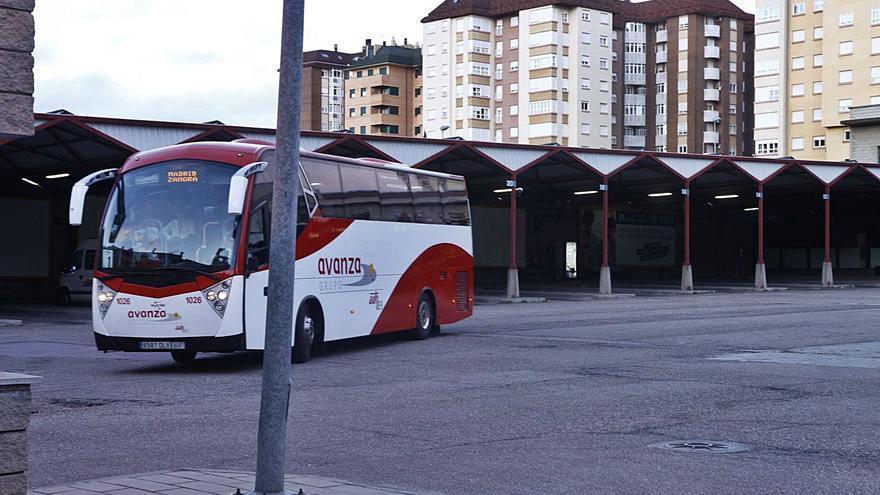 Las frecuencias de autobús entre Zamora y Madrid, pendientes de la demanda