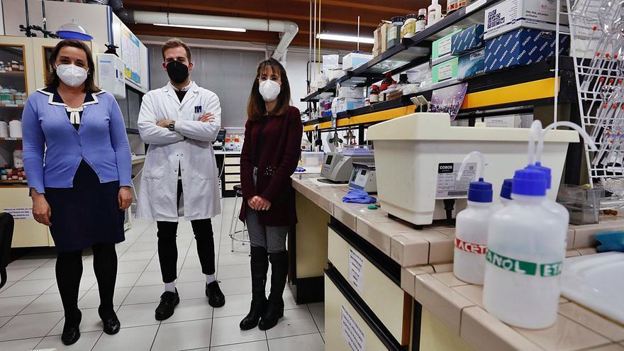 En busca del detector del cáncer de páncreas