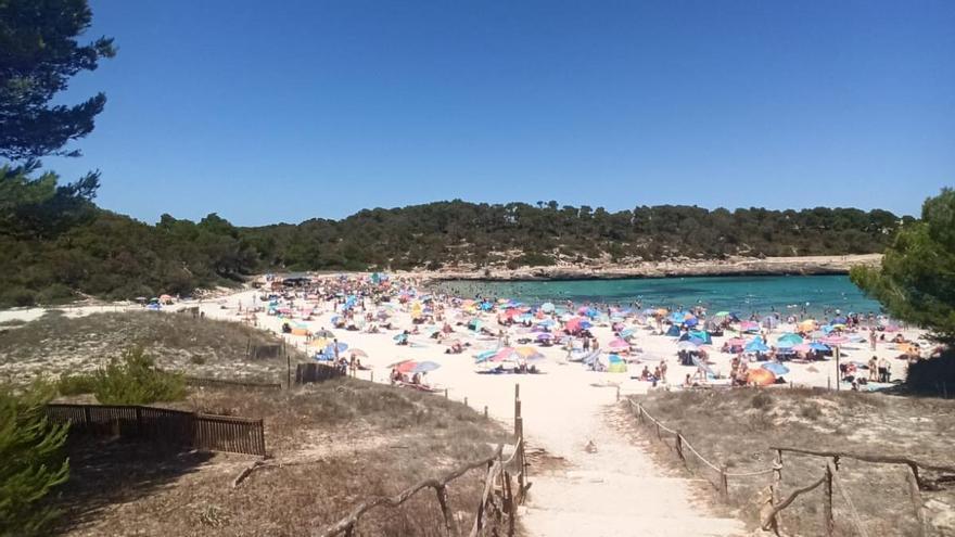 Saturación sin medidas de seguridad en playas de Mallorca