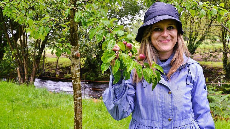 La mazana de mesa asturiana busca'l so sitiu nel mercáu