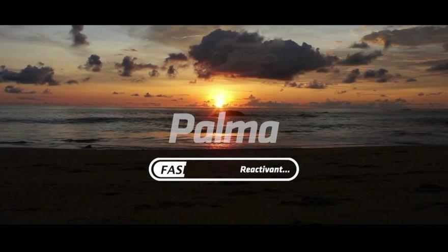 Ajuntament de Palma: Reactivant Fase III