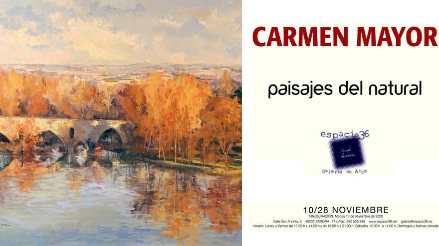 Carmen Mayor - Paisajes del natural