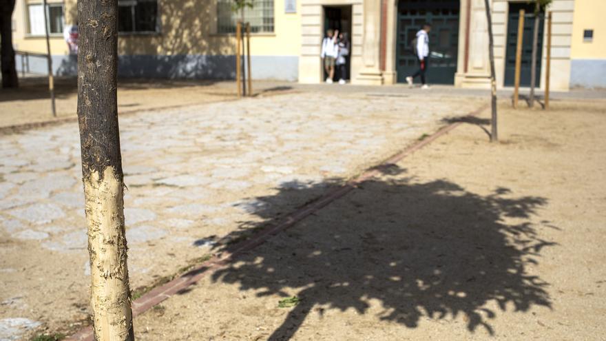 Les bretolades als arbres i l'incivisme afecten la plaça de l'Institut de Figueres